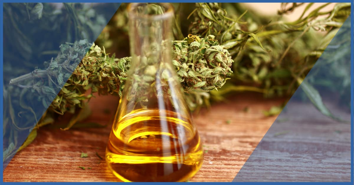 Click to read CBD Industry news